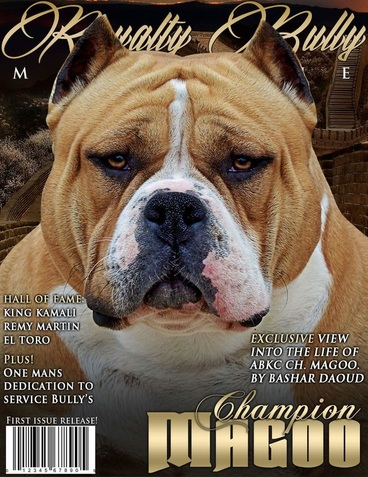MUSCLETONE BULLYS :: AMERICAN BULLYS KENNEL - BULLY PUPPIES FOR SALE